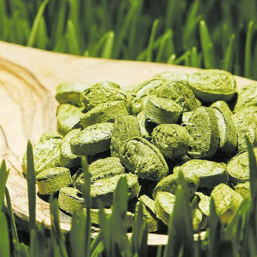 Прессованные ростки пшеницы 140 таб.-4