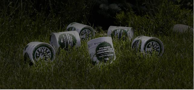 Ростки пшеницы для детокса